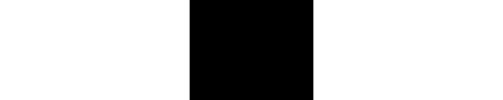 Catalyseur Porsche